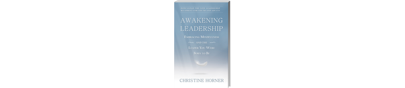 Surprise!  A new book:  Awakening Leadership